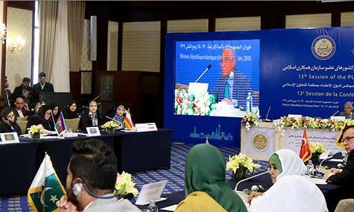 آغاز به کار نشست کمیته امور اقتصادی و محیط زیست اتحادیه بینالمجالس اسلامی