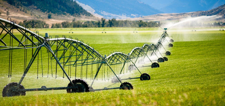 70 درصد پژوهش های مرکز تحقیقات کشاورزی مرتبط با محصولات استراتژیک است
