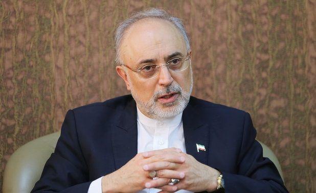 آژانس درخواست دیگری برای بازرسی از ایران ندارد