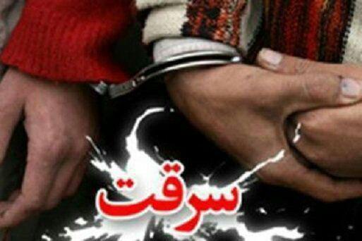 کشف 74 درصد سرقت ها در خراسان جنوبی/ احکام قضایی در مورد سرقتها بازدارنده نیست