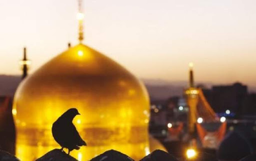 مهدویت در کلام ثامن الحجج(ع)؛ از علل غیبت تا برحق بودن رجعت