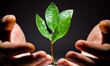 شیوه اسلام برای پاسخ به هیجانات انسان/میوه و ریشه شادی در اسلام مهم است