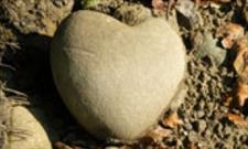 عوامل بیماری قلب