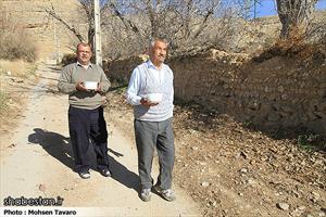 طبخ و توزیع ۱۴ هزار کیلوگرم شله زرد به مناسبت نهم ربیع الاول در شیراز