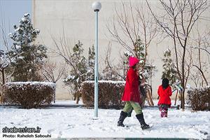 بارش برف تهران را سفیدپوش کرد