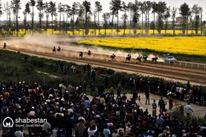 هفته دوم کورس بهاره مسابقات اسبدوانی  گنبدکاووس