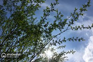 جلوههایی از زیبایی طبیعت در گیلان