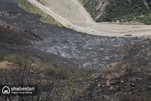 آتش سوزی در جنگل های گلستان