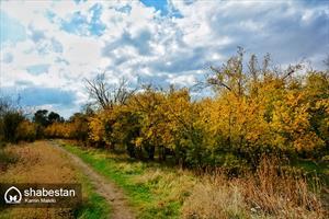 فصل طلایی پاییز در خرم اباد