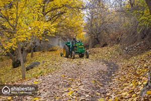 پاییز کردستان