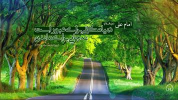 عکس نگاشت/ دنیا مکانی برای...