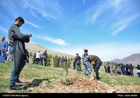 آیین درختکاری در خرم آباد