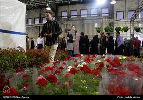 نمایشگاه گل و گیاه در یزد