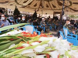 میهمانی لاله ها در کرمان